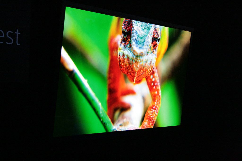 meilleur téléviseur OLED