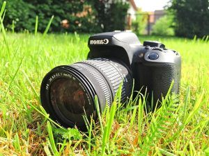 Nikon Vs Canon Fotocamera Reflex
